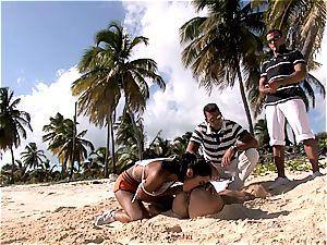 gang nailing on sunny shores
